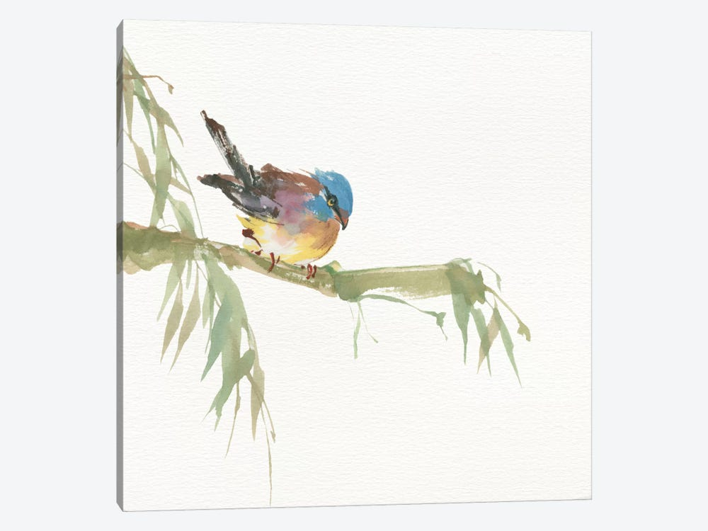 Finch by Chris Paschke 1-piece Canvas Print