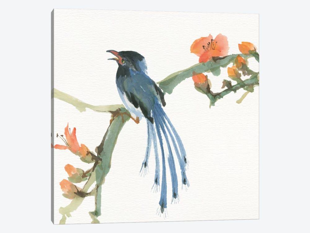 Formosan Blue Magpie by Chris Paschke 1-piece Canvas Wall Art