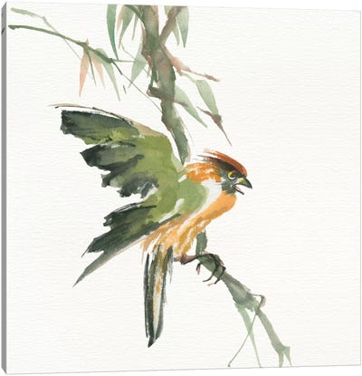 Formosan Firecrest Canvas Art Print
