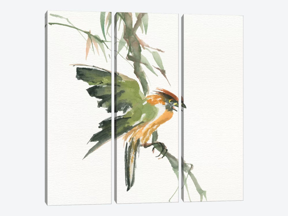 Formosan Firecrest by Chris Paschke 3-piece Art Print