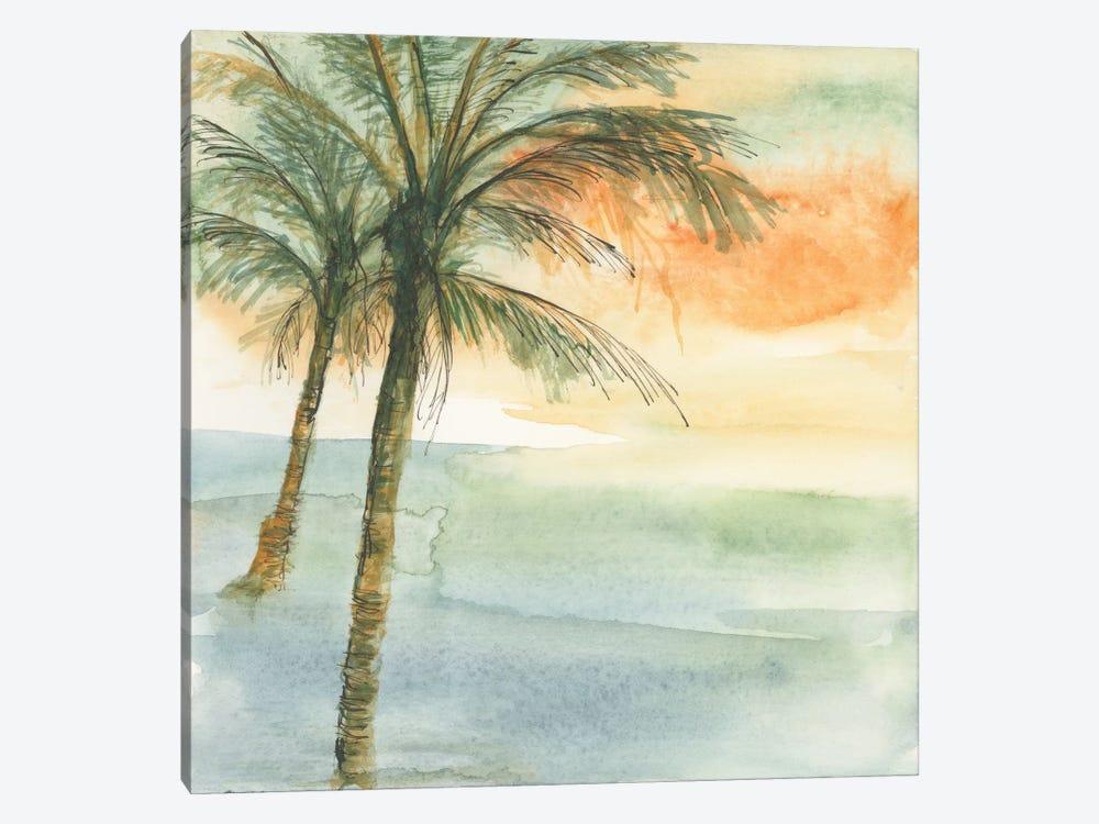 Island Sunset I by Chris Paschke 1-piece Canvas Wall Art