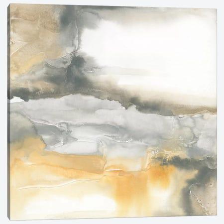 Minerals I Canvas Print #WAC4640} by Chris Paschke Art Print