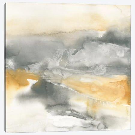 Minerals II Canvas Print #WAC4641} by Chris Paschke Canvas Art Print