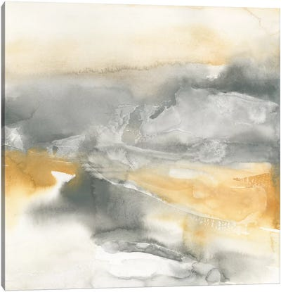 Minerals II Canvas Art Print