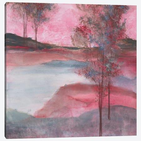 Morning Passion Canvas Print #WAC4643} by Chris Paschke Canvas Art Print