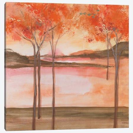 Mountain Meadow I Canvas Print #WAC4645} by Chris Paschke Canvas Art