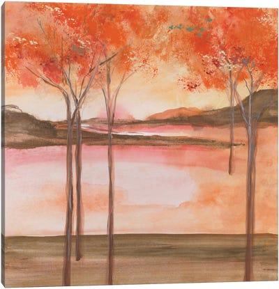 Mountain Meadow I Canvas Print #WAC4645
