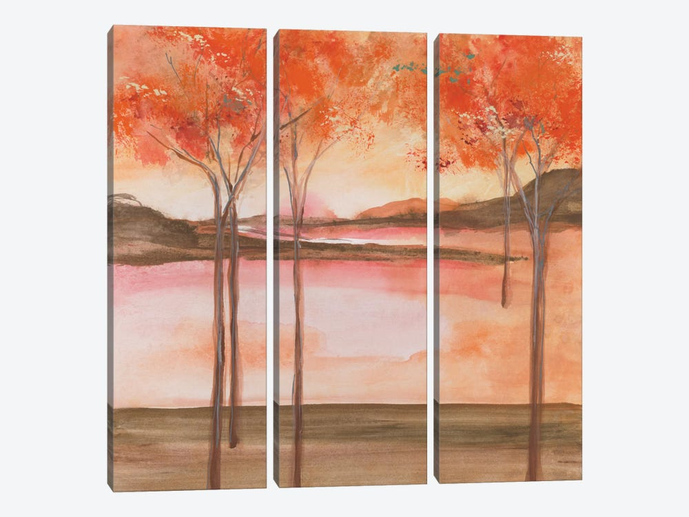 Mountain Meadow I by Chris Paschke 3-piece Canvas Print