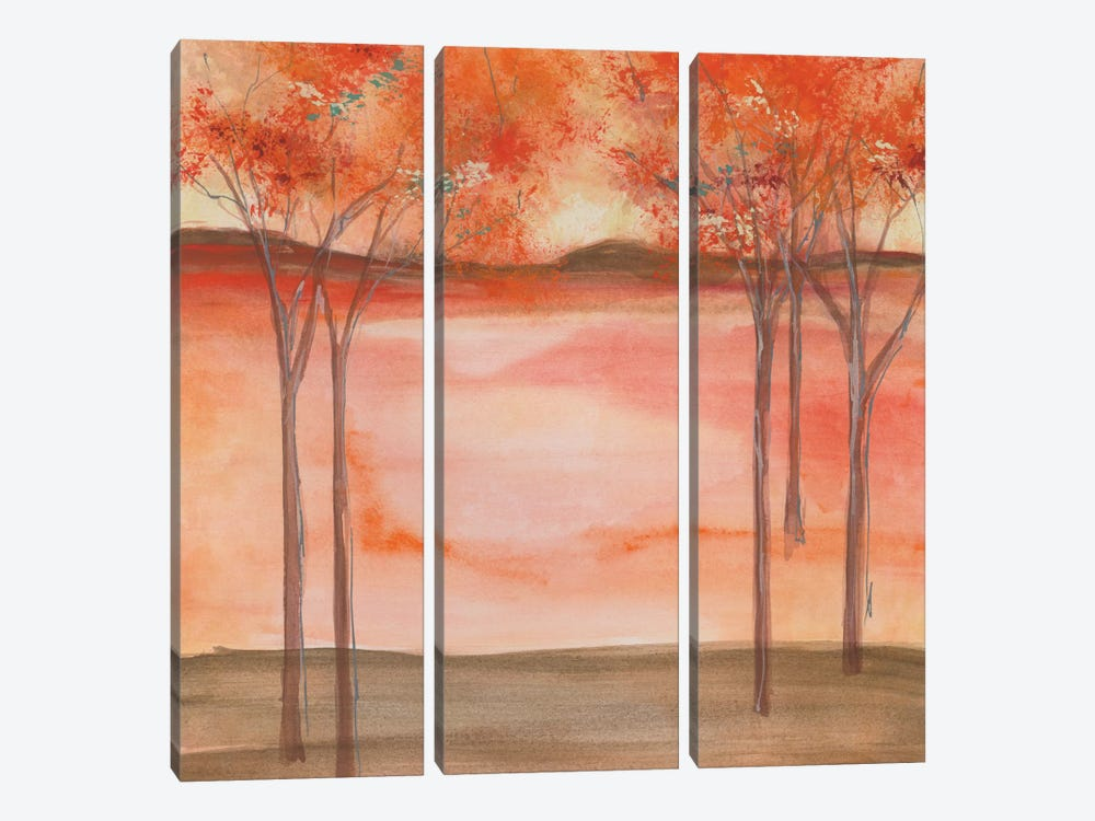 Mountain Meadow II by Chris Paschke 3-piece Canvas Wall Art