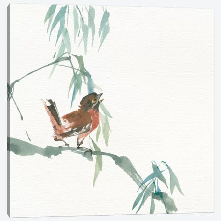 Russet Sparrow Canvas Print #WAC4651} by Chris Paschke Canvas Art
