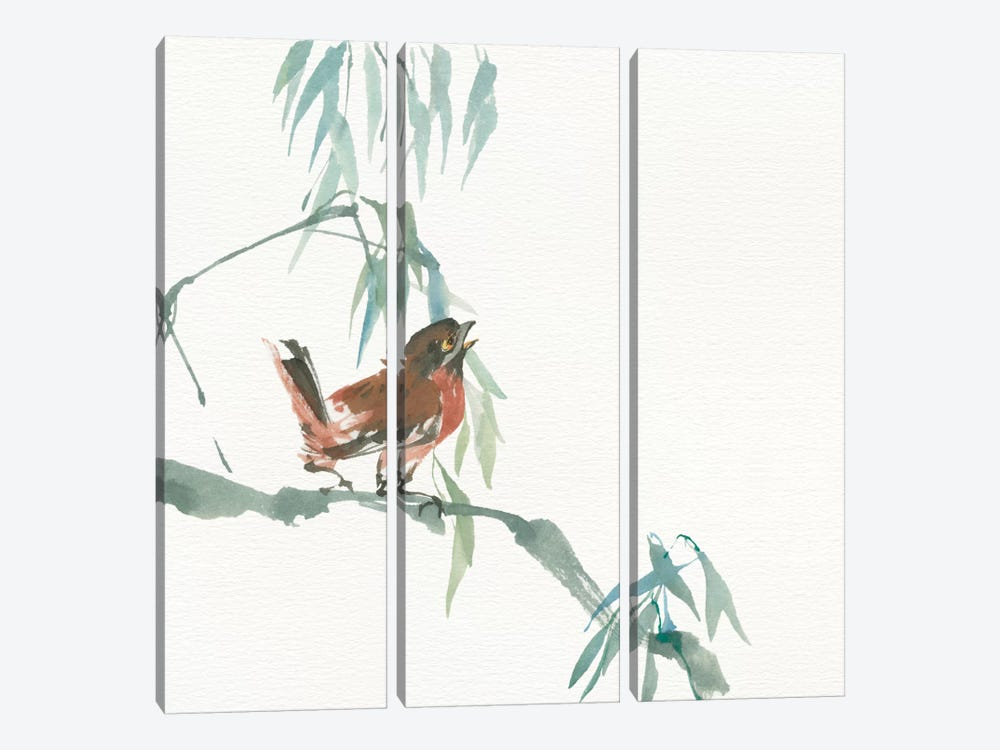 Russet Sparrow by Chris Paschke 3-piece Canvas Artwork