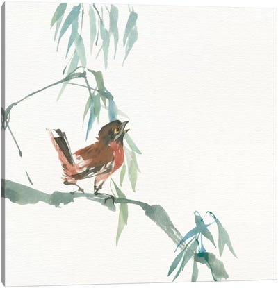 Russet Sparrow Canvas Art Print