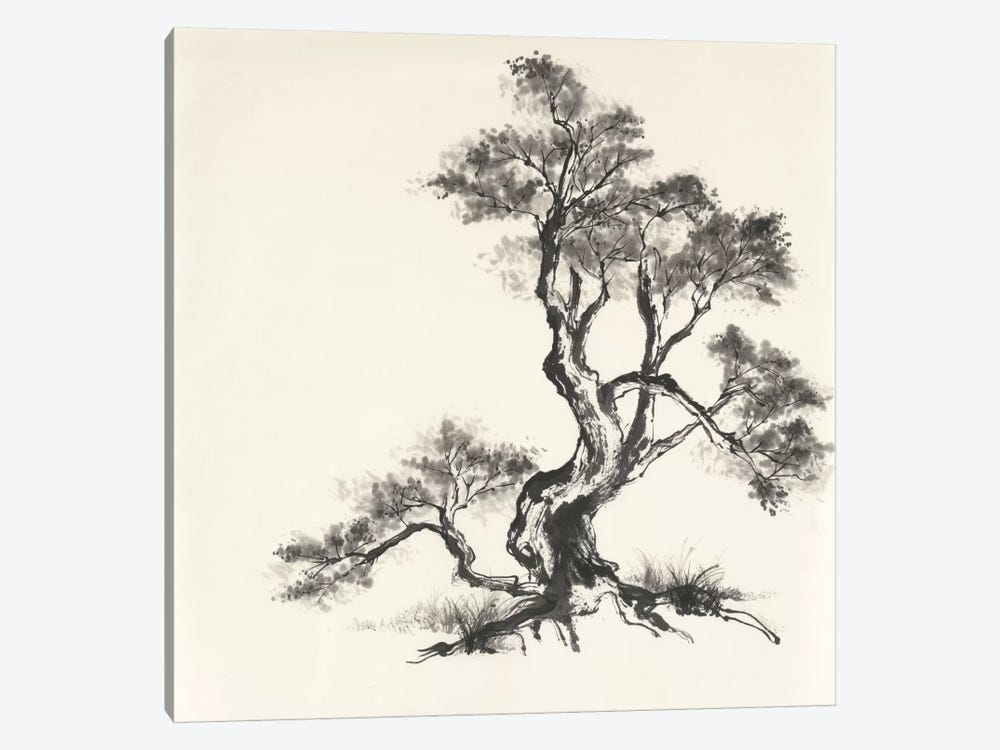 Sumi Tree I by Chris Paschke 1-piece Canvas Artwork