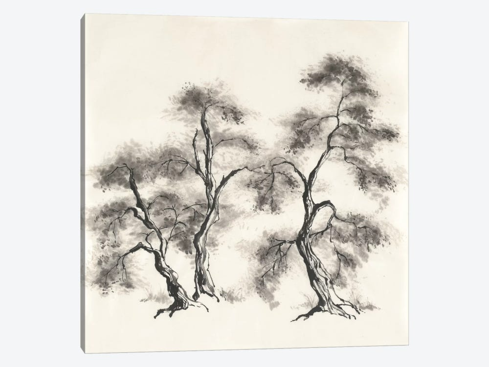 Sumi Tree III by Chris Paschke 1-piece Canvas Wall Art