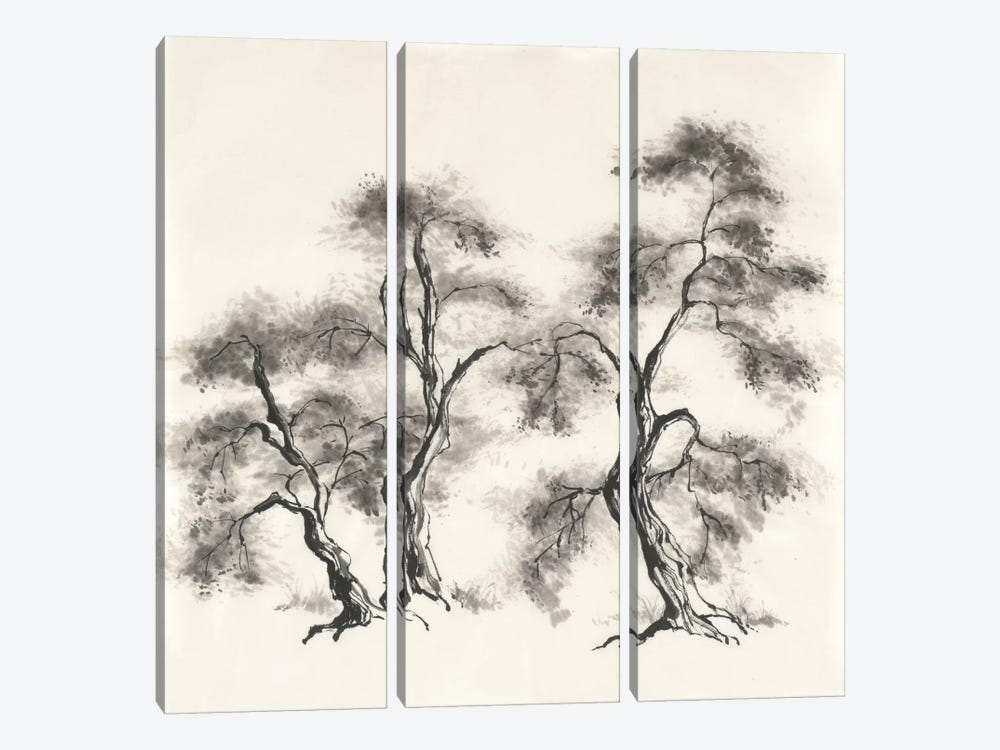 Sumi Tree III by Chris Paschke 3-piece Canvas Wall Art
