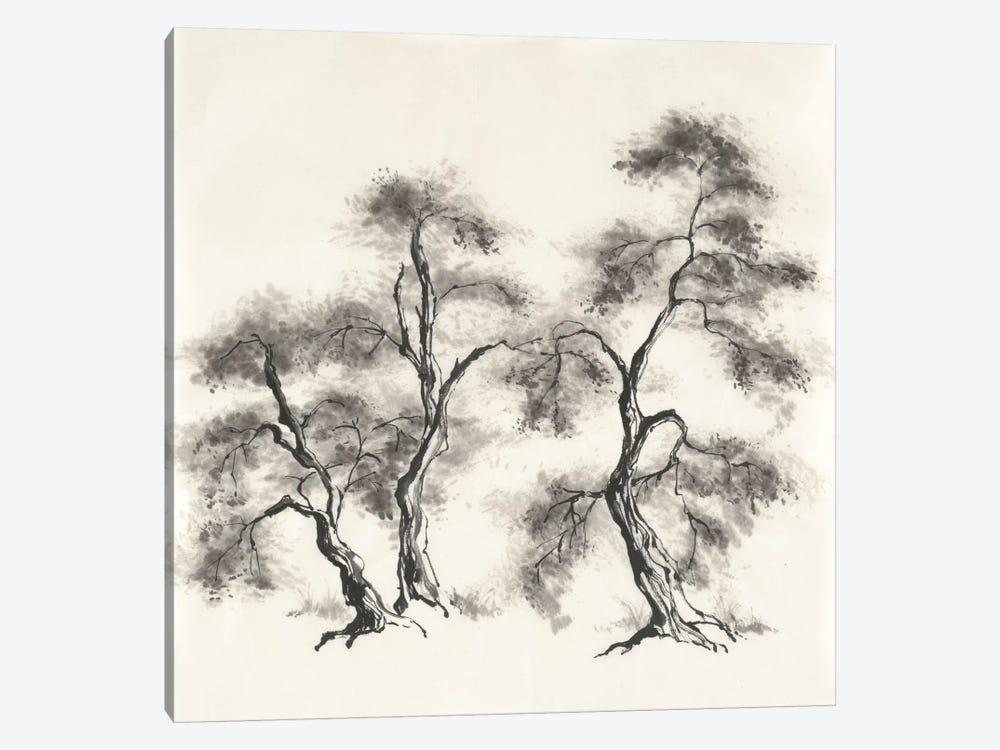 Sumi Tree III by Chris Paschke 1-piece Canvas Wall Art