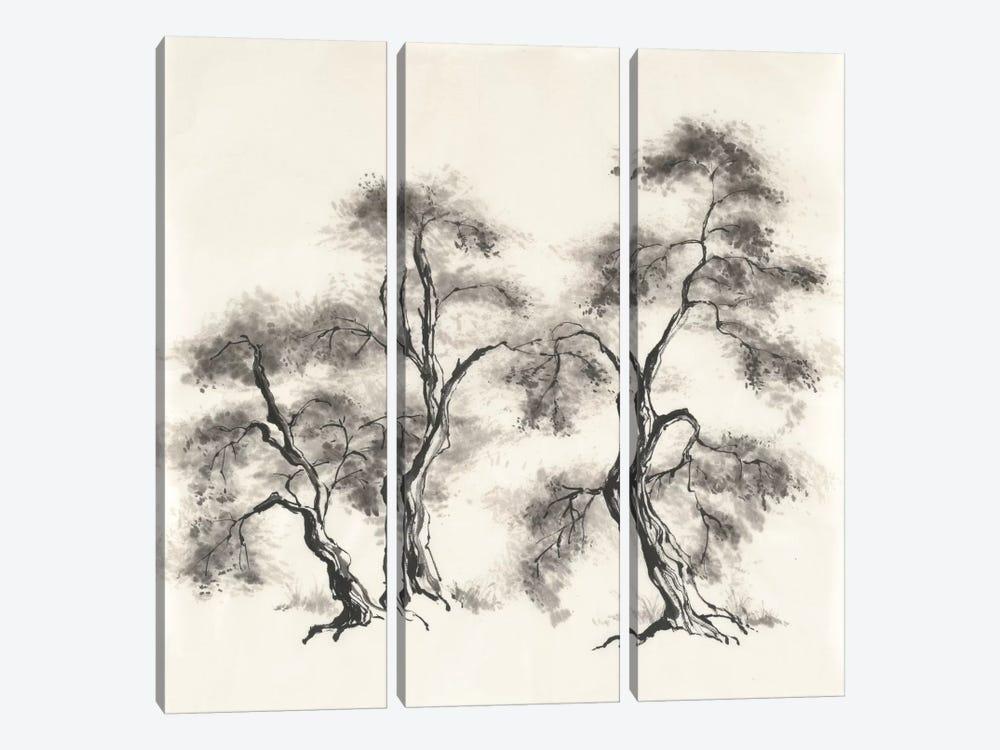 Sumi Tree III by Chris Paschke 3-piece Canvas Wall Art