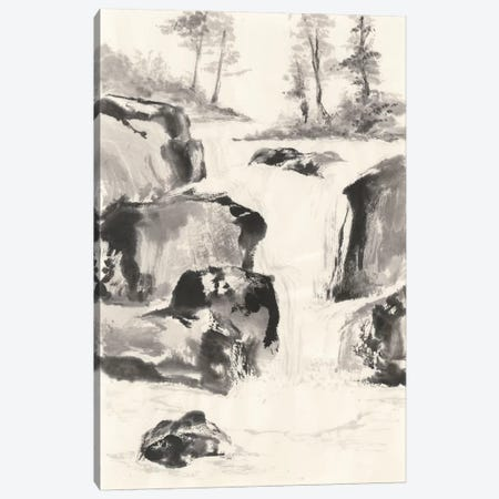 Sumi Waterfall II Canvas Print #WAC4657} by Chris Paschke Canvas Print