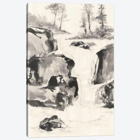 Sumi Waterfall II Canvas Print #WAC4657} by Chris Paschke Canvas Print