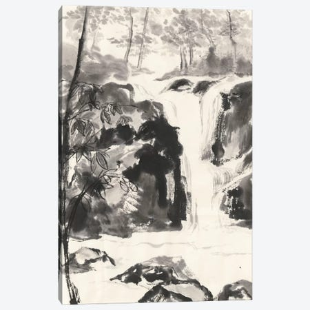 Sumi Waterfall III Canvas Print #WAC4658} by Chris Paschke Canvas Art
