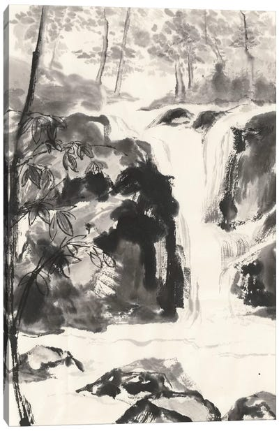 Sumi Waterfall III Canvas Art Print