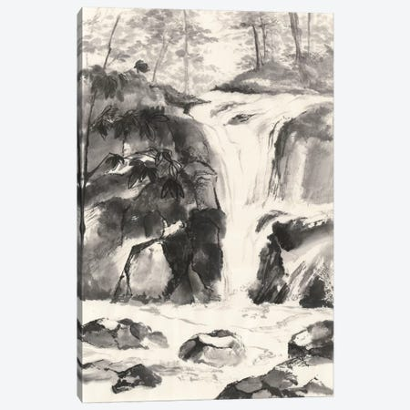 Sumi Waterfall IV Canvas Print #WAC4659} by Chris Paschke Canvas Art