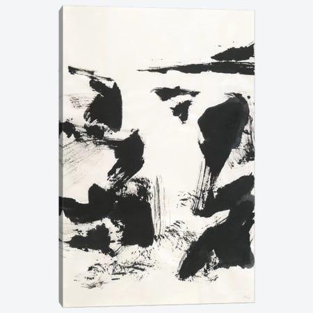 Sumi Waterfall VI Canvas Print #WAC4661} by Chris Paschke Canvas Print