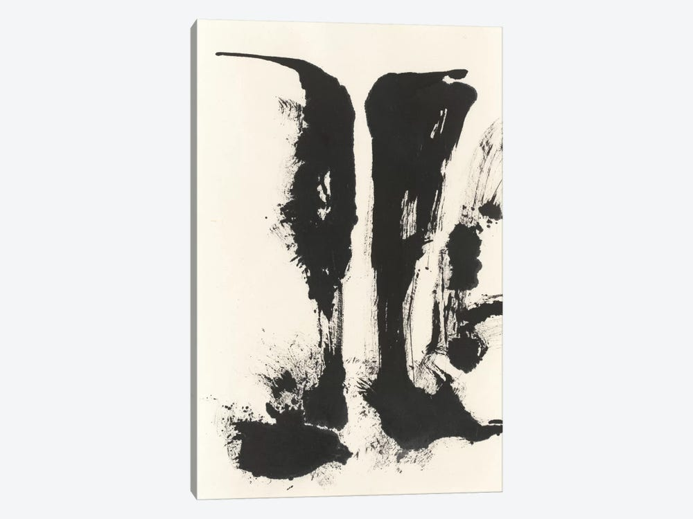 Sumi Waterfall VIew V by Chris Paschke 1-piece Canvas Artwork