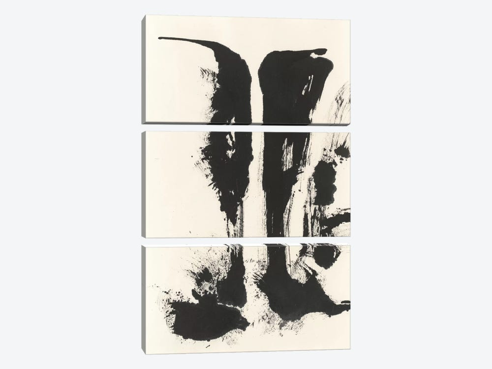 Sumi Waterfall VIew V by Chris Paschke 3-piece Canvas Wall Art