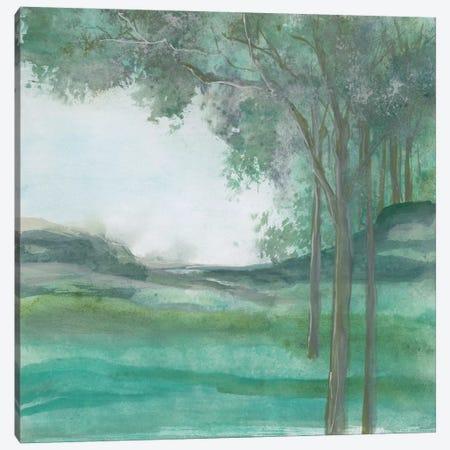 Summer Nights Canvas Print #WAC4665} by Chris Paschke Canvas Artwork