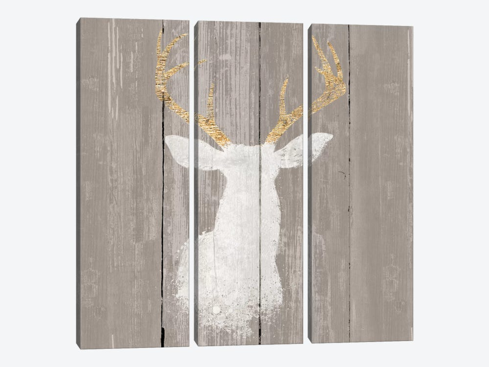Precious Antlers I by Wellington Studio 3-piece Canvas Art