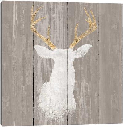 Precious Antlers I Canvas Art Print