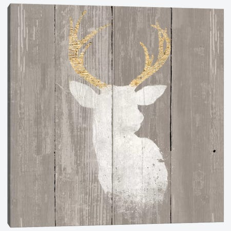 Precious Antlers II Canvas Print #WAC4676} by Wellington Studio Art Print
