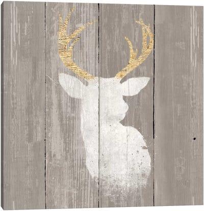 Precious Antlers II Canvas Art Print