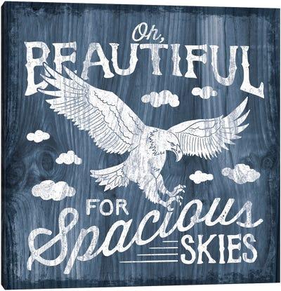 America The Beautiful I Canvas Print #WAC4687