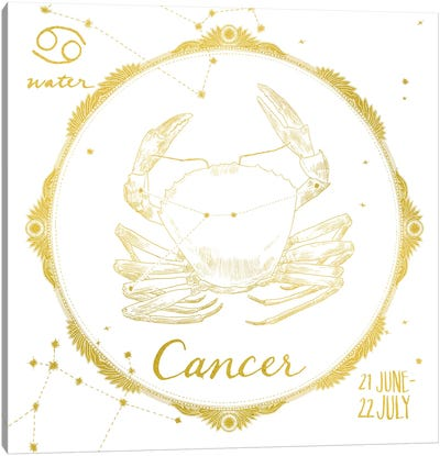 Cancer Canvas Art Print
