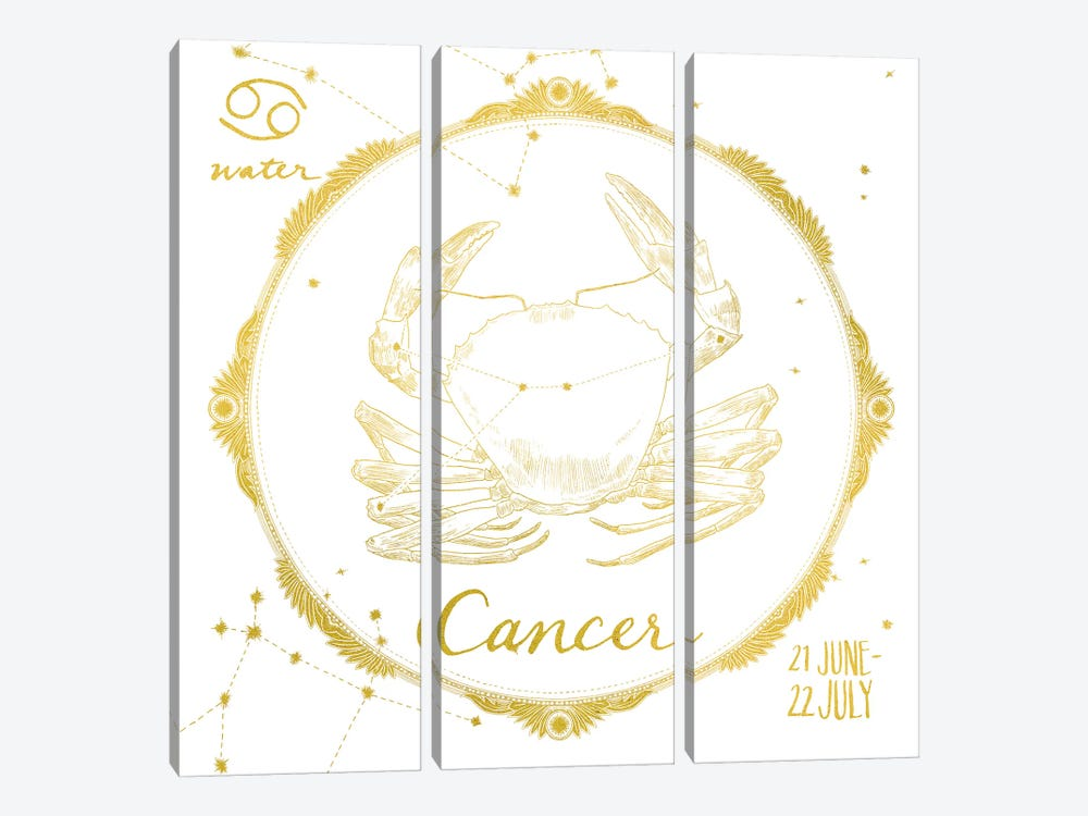 Cancer by Sara Zieve Miller 3-piece Canvas Wall Art