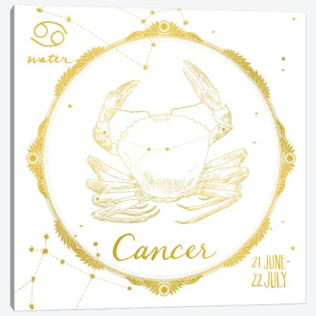 Cancer Canvas Print #WAC4699} by Sara Zieve Miller Canvas Wall Art