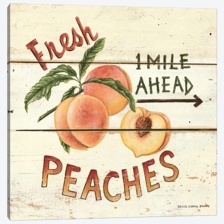 Fresh Peaches Canvas Print #WAC469} by David Carter Brown Canvas Wall Art