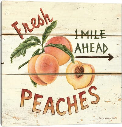 Fresh Peaches Canvas Art Print