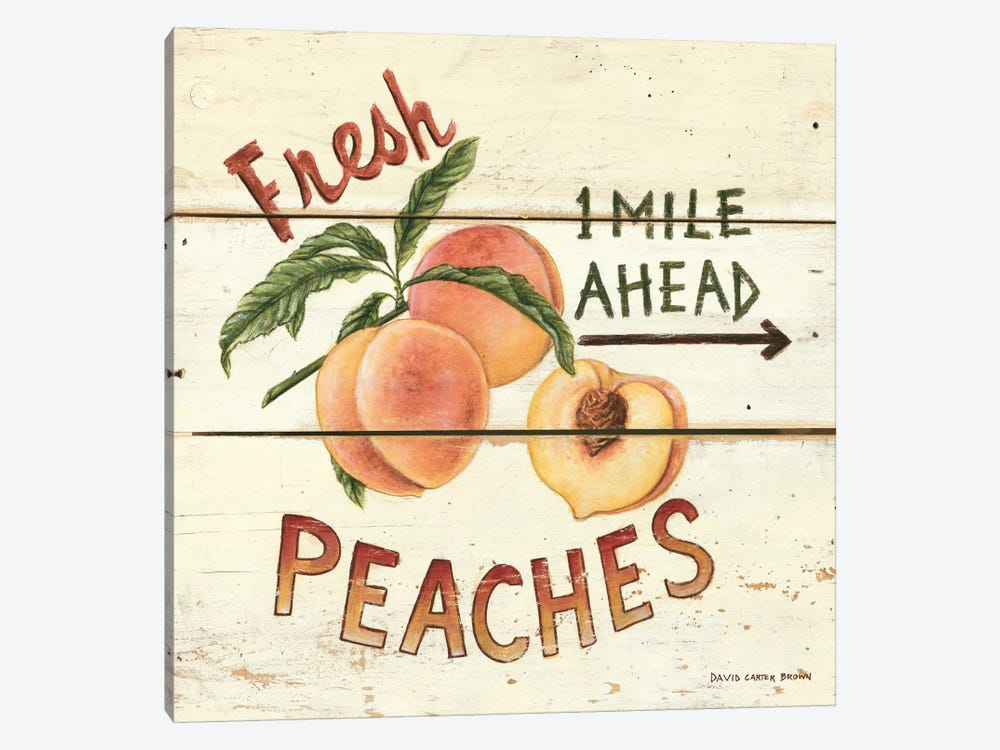 Fresh Peaches by David Carter Brown 1-piece Canvas Art
