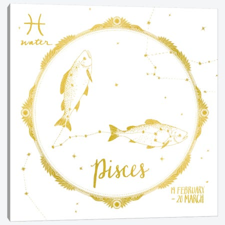 Pisces Canvas Print #WAC4704} by Sara Zieve Miller Art Print