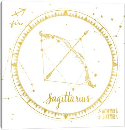 Night Sky Series: Sagittarius Canvas Print #WAC4705