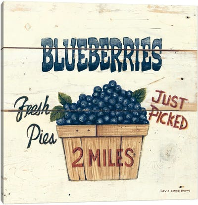 Blueberries Just Picked Canvas Print #WAC470