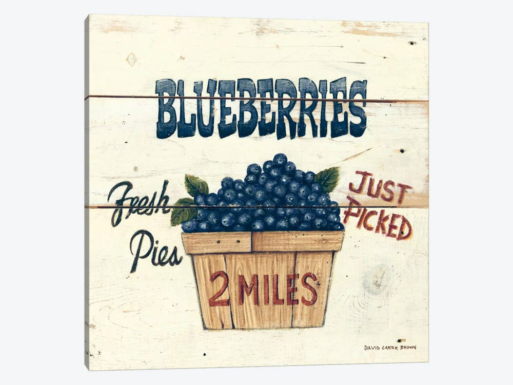 Blueberries Just Picked by David Carter Brown 1-piece Canvas Wall Art