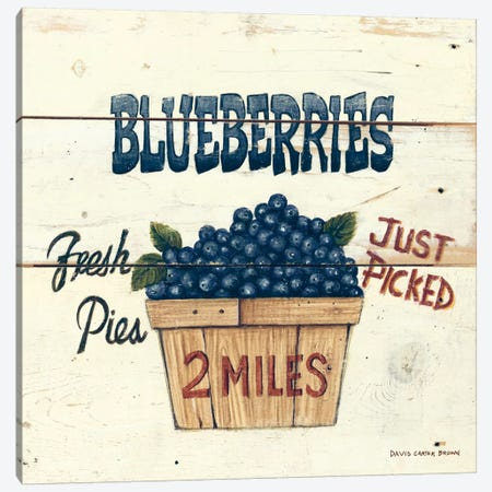 Blueberries Just Picked Canvas Print #WAC470} by David Carter Brown Art Print