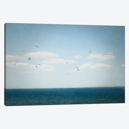 Calm Days IV Canvas Print #WAC4713} by Elizabeth Urquhart Canvas Print