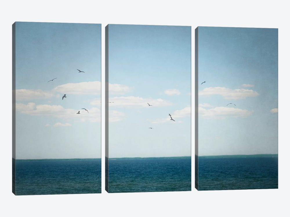 Calm Days IV by Elizabeth Urquhart 3-piece Canvas Print