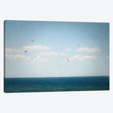 Calm Days IV Canvas Print #WAC4713} by Elizabeth Urquhart Canvas Print
