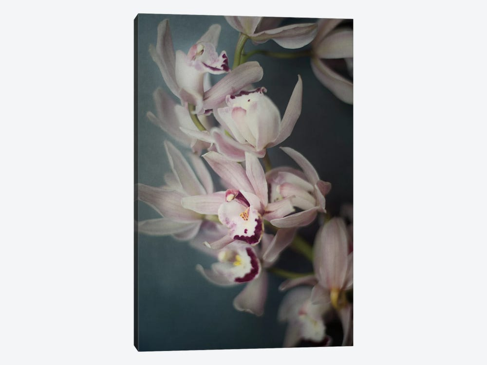 Dark Orchid I 1-piece Canvas Artwork